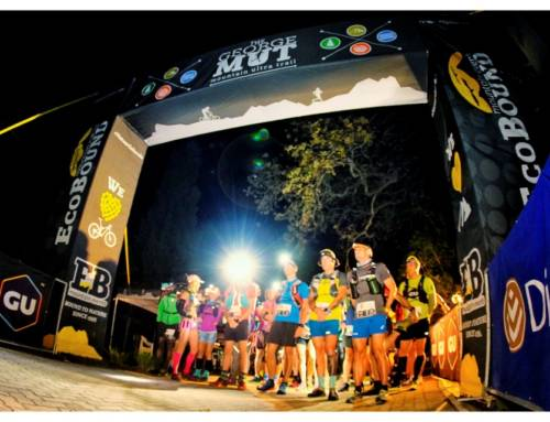 Lombard and Scholtz Run to Discovery MUT Titles