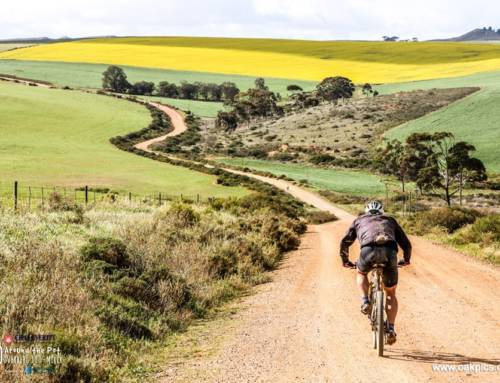 Introducing a 100 Miler Series across South Africa