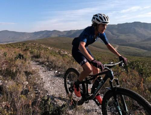 Overberg Escape: R&R in the Western Cape's Secret Playground