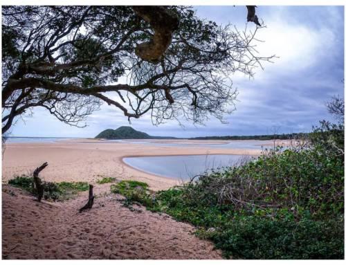 Beyond Lockdown: iSimangaliso Wetland Park