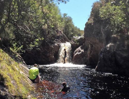 Suicide Gorge: Failure to Launch